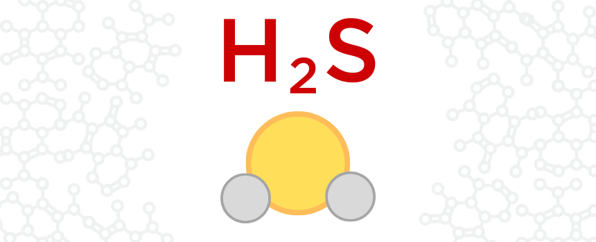 WHAT IS H2S? Interra Global